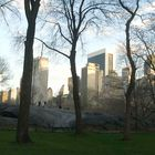 CENTRAL PARK - NYC 4