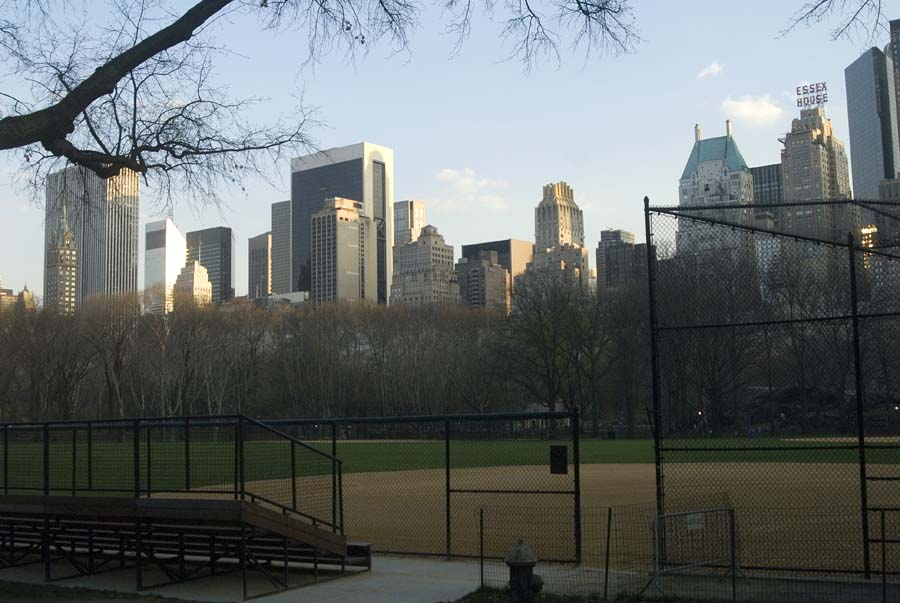 CENTRAL PARK - NYC 5