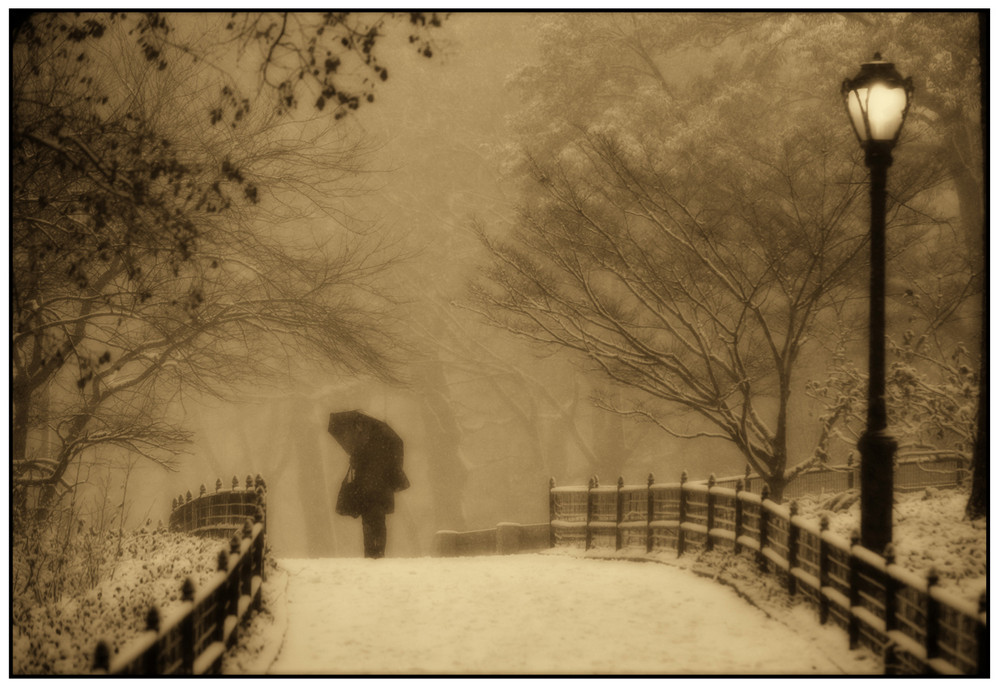 Central Park2009