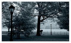 Centralpark im Regen