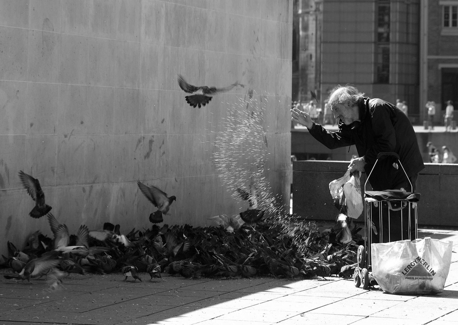 Centre Pompidou, Paris - Alter Mann füttert Tauben