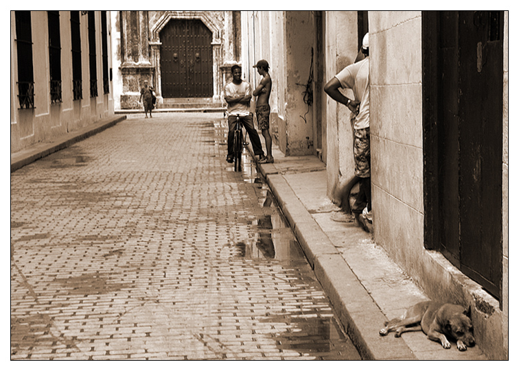 Centro Habana IV