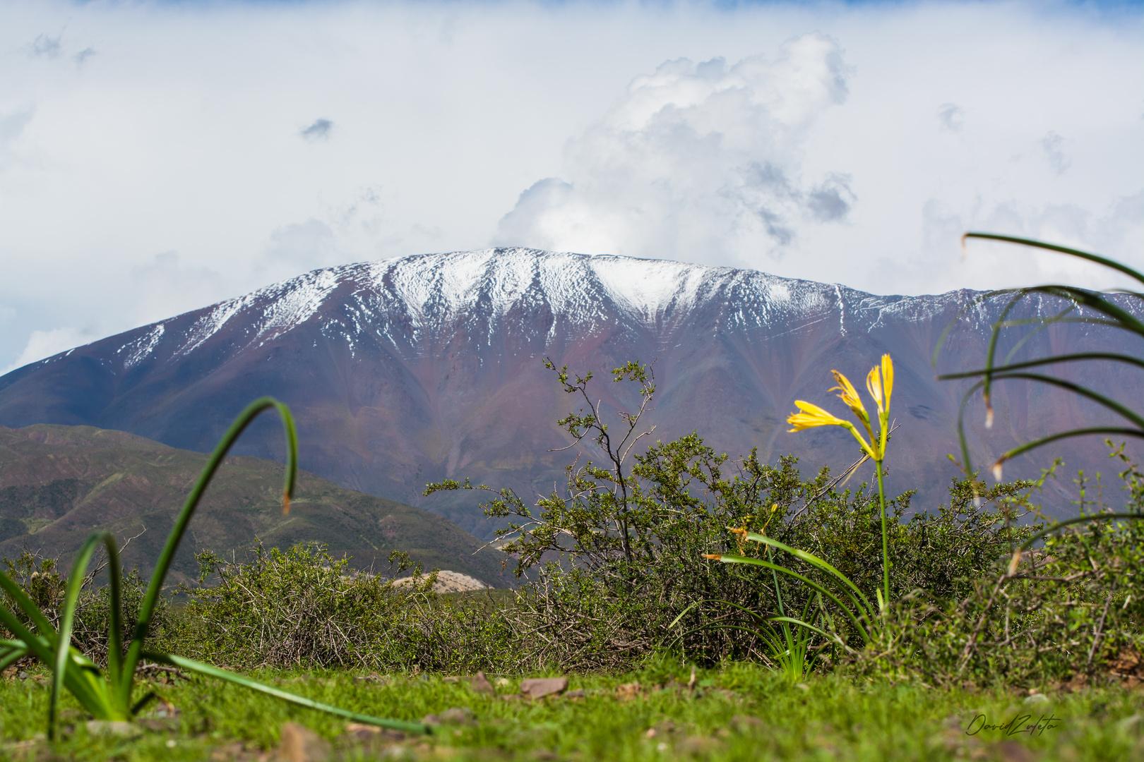 Cerro Negro y Amancay