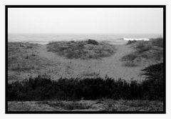 c'est l'histoire de deux chemins qui se séparent... se recroiseront ils  deriière la dune ?
