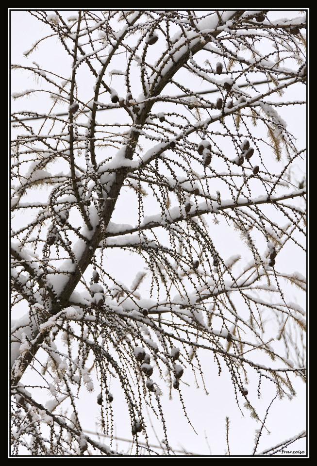 C'est l'hivers