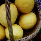 Cesto de limones