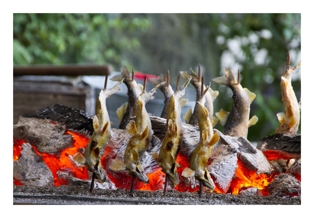 Charcoal grilled AYU