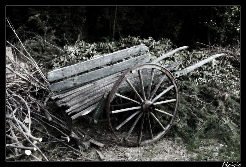 Chariot Savoyard