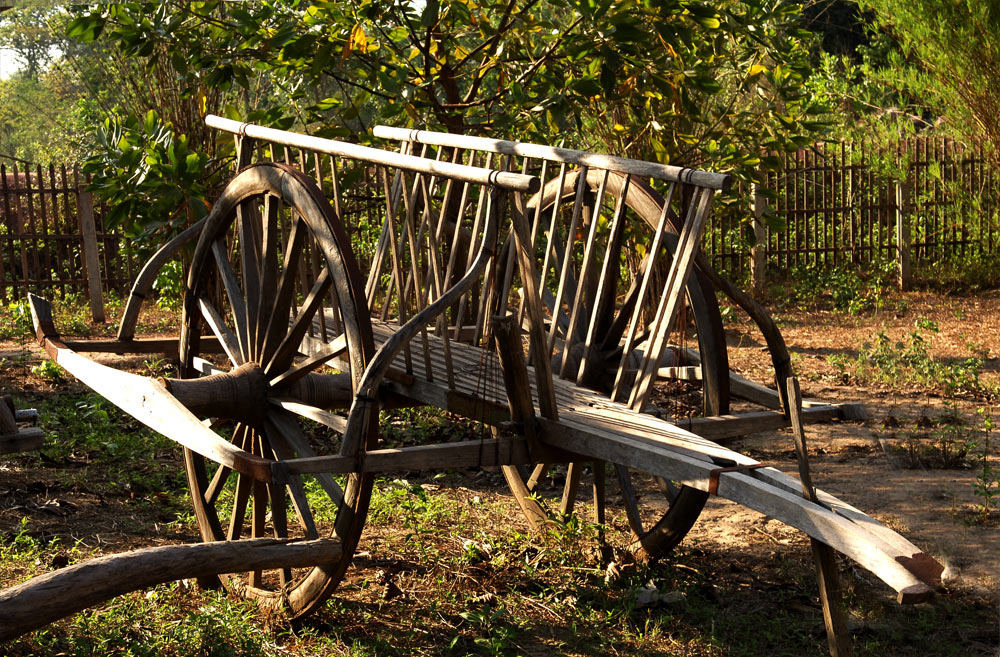Chariots Of Fire!!! An Old Water Buffalo Drawn Cart. (Story Within).