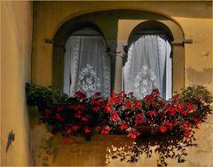 charmante  fenêtre à l  ancienne ....