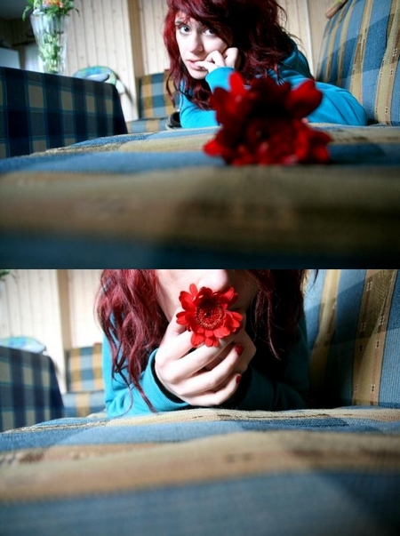 charming flowers.