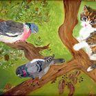 chasseur de pigeons