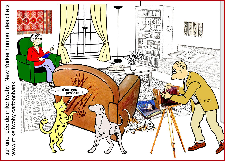 chat peintre