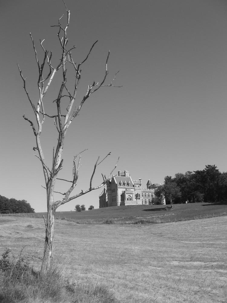 Chateau d'Abbadie