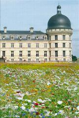 chateau de Valenc?ay