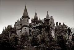Chateau Noisy (1)