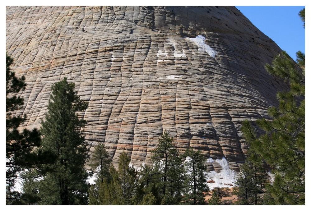 """""""Checkerboard Mesa"""" im Zion NP mit etwas Schnee"""