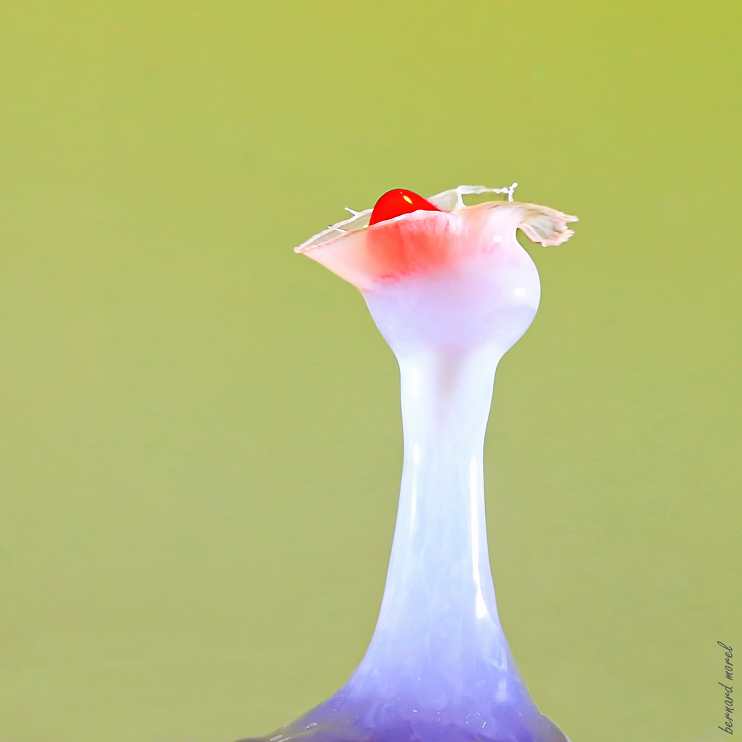 Cherry in a porcelain cup....!