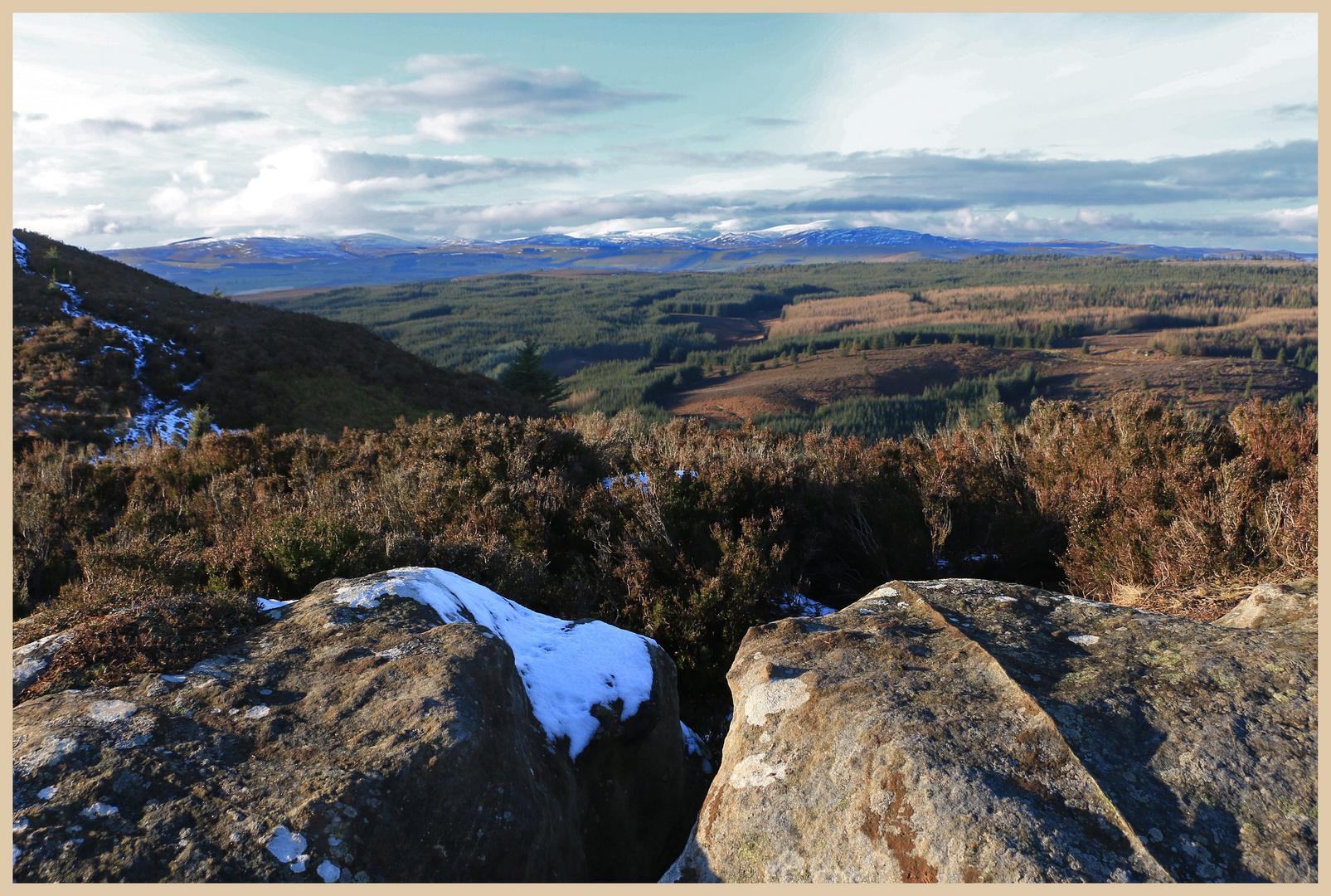Cheviot Hills from thrunton crags 6