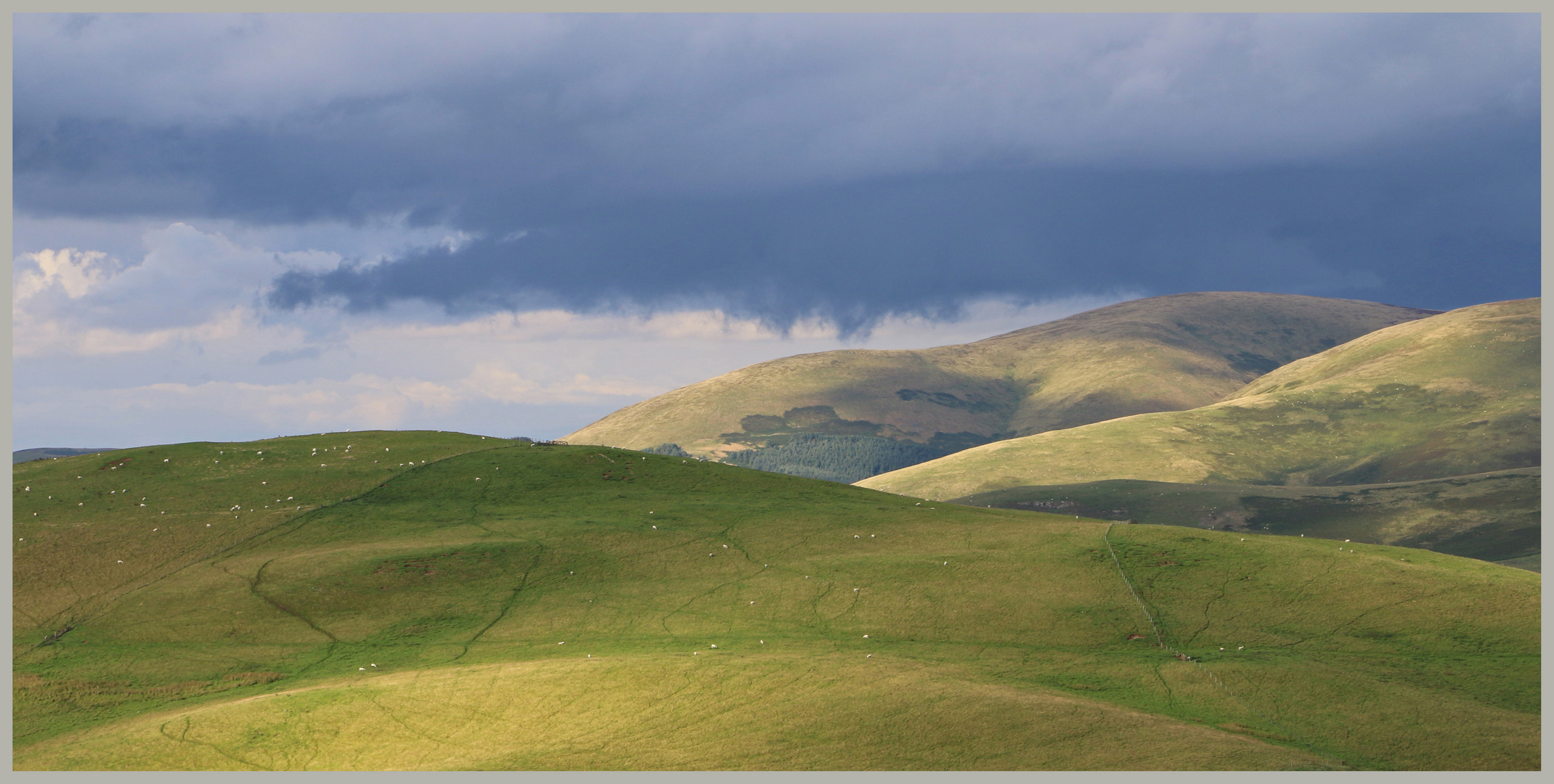 cheviot hills near Hownam in Scotland