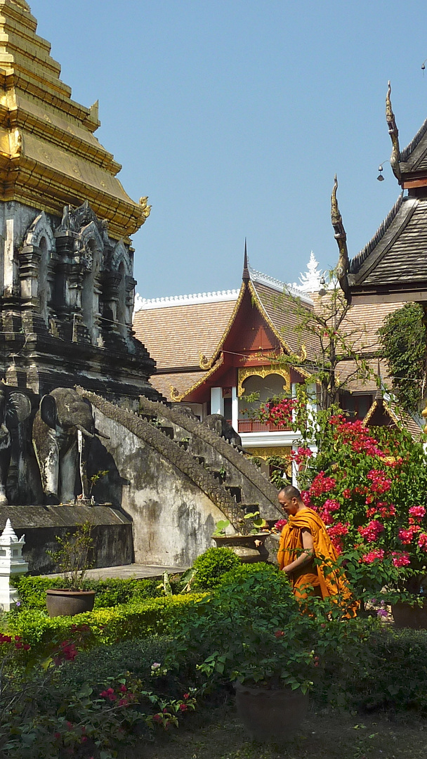 Chiang Mai, Old City: Impressions 3