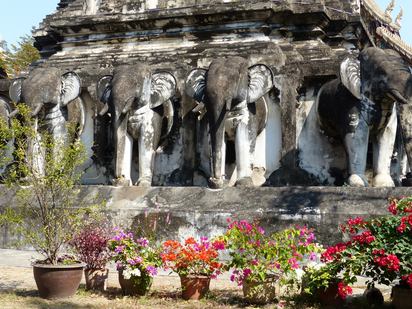Chiang Mai, Old City: Impressions 6