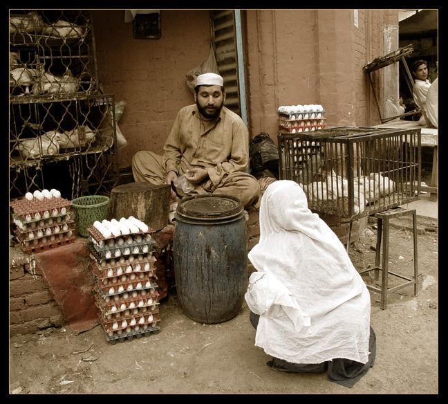chicken merchant
