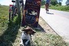 Chico wartet auf sein Hot  Dog....:))))