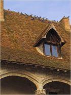 Chien-assis et pigeons debout