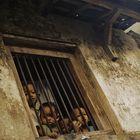 children behind window