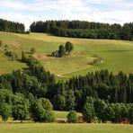 chilliger Schwarzwaldausblick