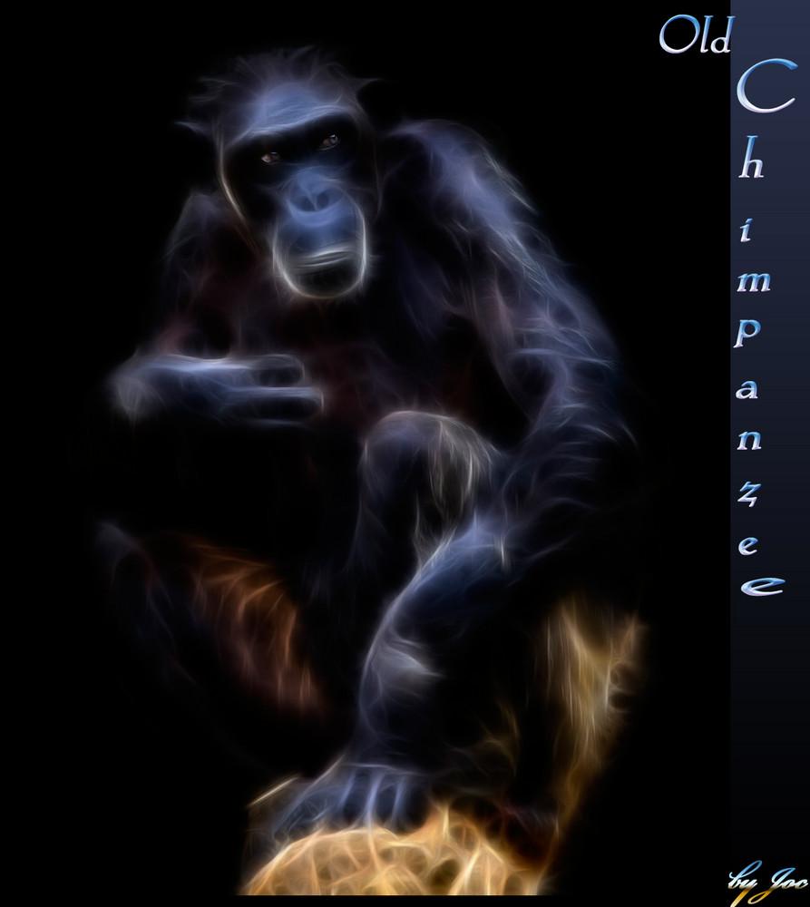 Chimpanzee -Fractalius