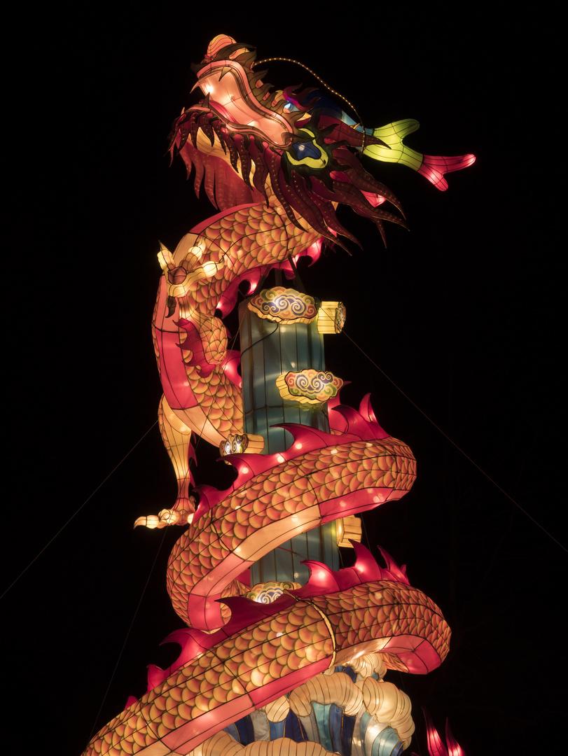 ~ China Light Festival - Drache ~