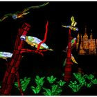 China Light Kölner Zoo