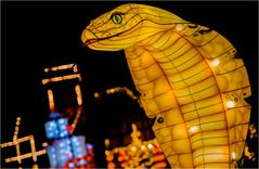 China lights im Europa Park 13