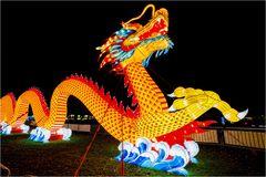 China lights im Kölner Zoo 1