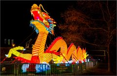 China lights im Kölner Zoo 11
