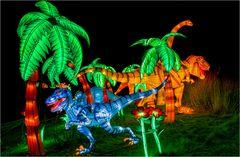 China lights im Kölner Zoo 15