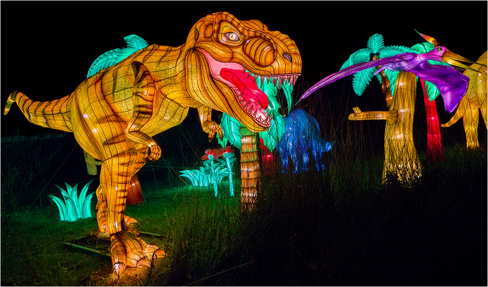 Kölner Zoo China Light