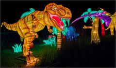 China lights im Kölner Zoo 19