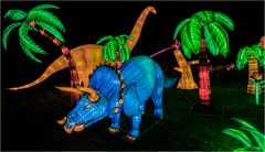 China lights im Kölner Zoo 20