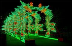 China lights im Kölner Zoo 22