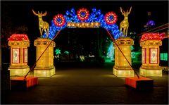 China lights im Kölner Zoo 23