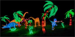 China lights im Kölner Zoo 28