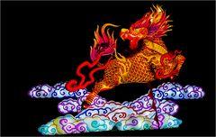 China lights im Kölner Zoo 6