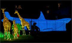 China lights im Kölner Zoo 8
