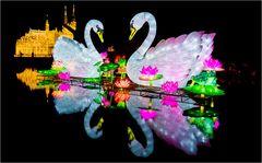 China lights im Kölner Zoo 9