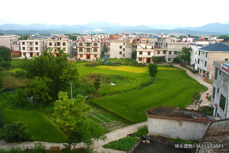 China's rural