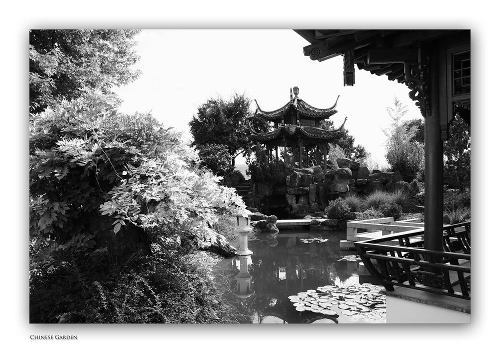 Chinese Garden (Forum Fotografie 2013)