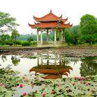 Chinesische Gartengestaltung im Universitätscampus Hefei